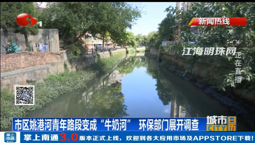 """og真人厅市区姚港河青年路段变成""""牛奶河"""""""