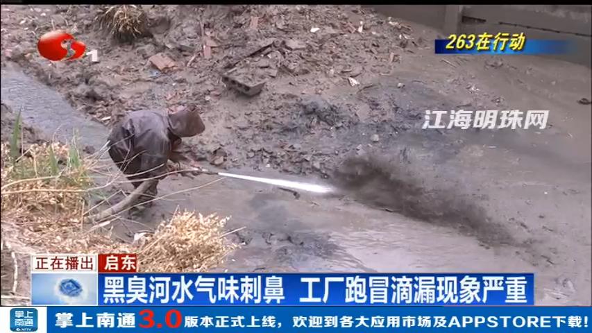 启东:黑臭河水气味刺鼻 工厂跑冒滴漏现象严重