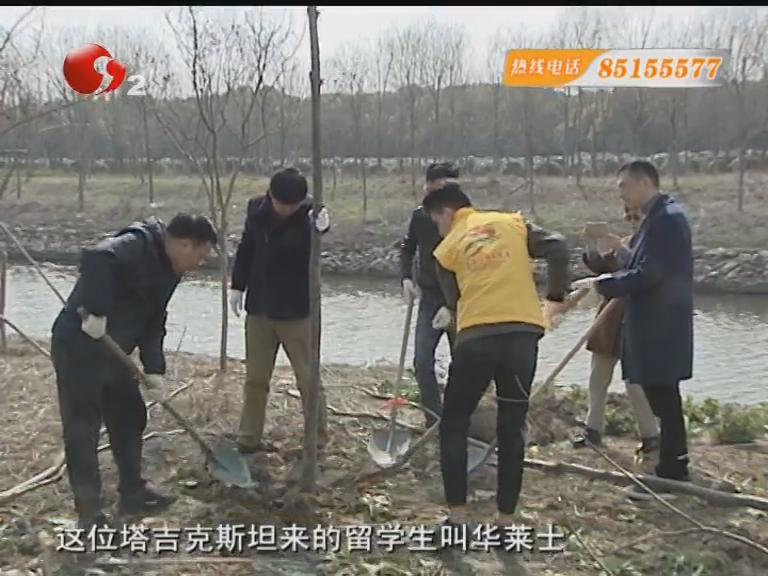 植树节:中外志愿者为南通添绿加彩