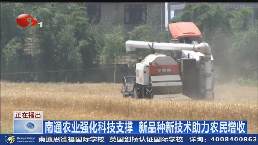 南通农业强化科技支撑  新品种新技术助力农民增收