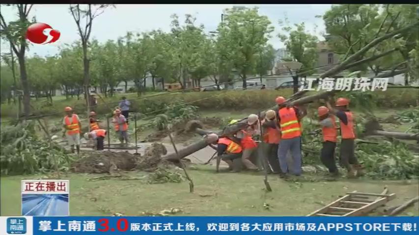 """""""温比亚""""造成南通市区千棵树木受损 养护人员全城奔走忙修复"""