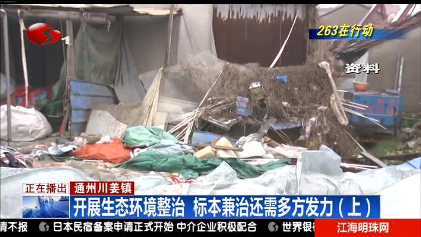 通州川姜镇:开展生态环境整治 标本兼治还需多方发力