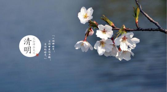 """【网络中国节·清明】让""""清明""""成为每个中国人的生命底色"""