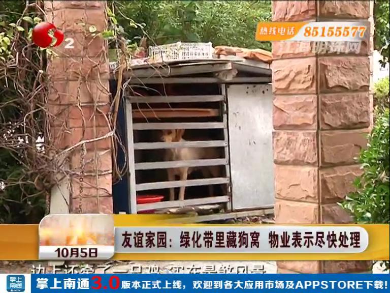 南通友谊家园:绿化带里藏狗窝  物业表示尽快处理