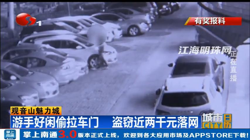 南通观音山:游手好闲偷拉车门 盗窃近两千元落网