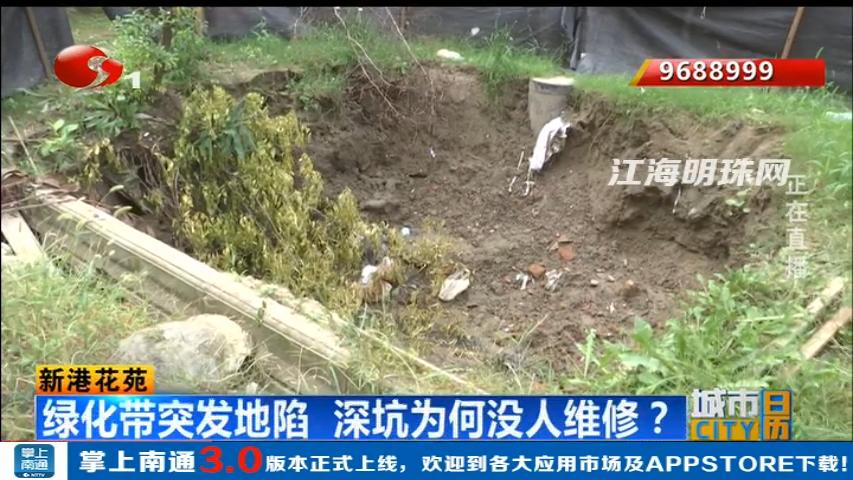 新港花苑:绿化带突发地陷  深坑为何没人维修?