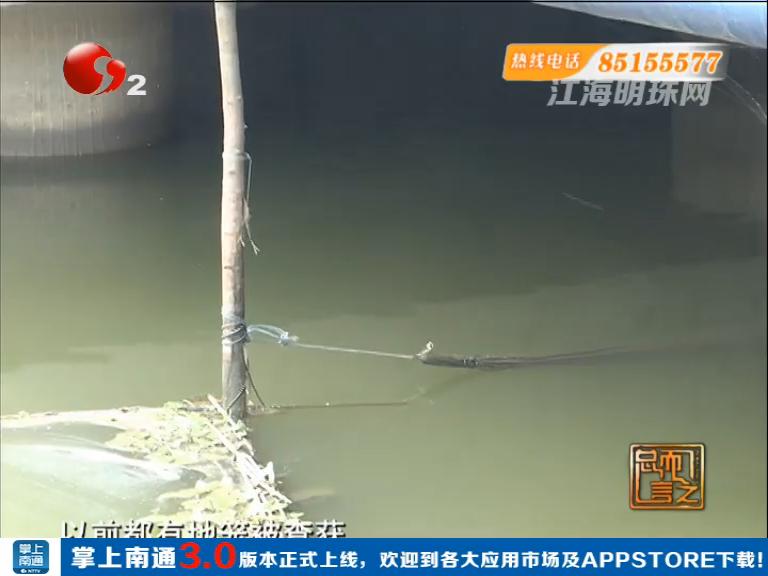 港闸区幸福横河:河中地笼网 何时管一管
