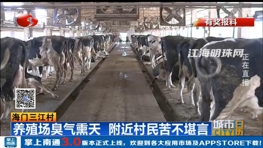 海门三江村:养殖场臭气熏天 附近村民苦不堪言