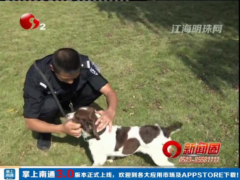 不解之缘:训导员沙磊和缉毒犬